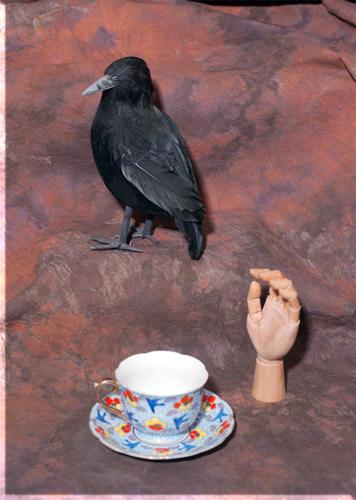 Cup Hand Bird